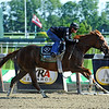 Dullahan, Javier Castellano up, works a bullet four furlongs in 45:97 Sunday morning at Belmont...<br /> © 2012 Rick Samuels/The Blood-Horse