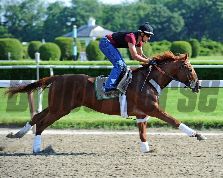 Kentucky Derby and preakness winner I'll Have Another, Sunday morning at Belmont...<br /> © 2012 Rick Samuels/The Blood-Horse