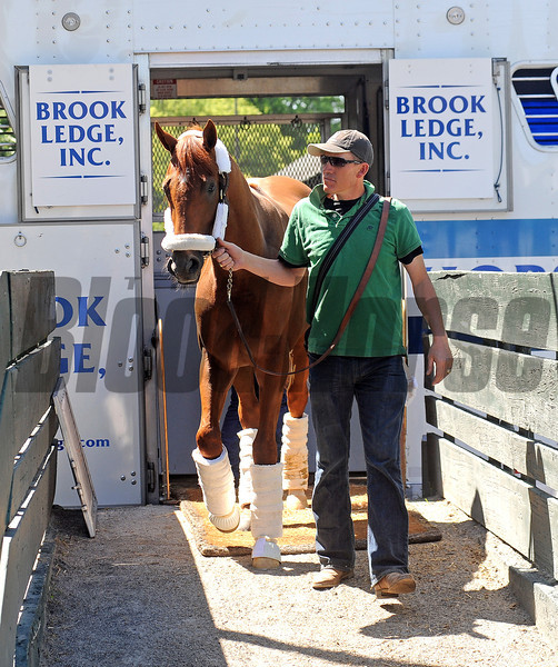 Kentucky Derby and Preakness winner I'll Have Another, and his groom Benjamin Perez, arrive at Belmont Park Sunday afternoon, May 20, after a van ride from Baltimore.<br /> © 2012 Rick Samuels/The Blood-Horse