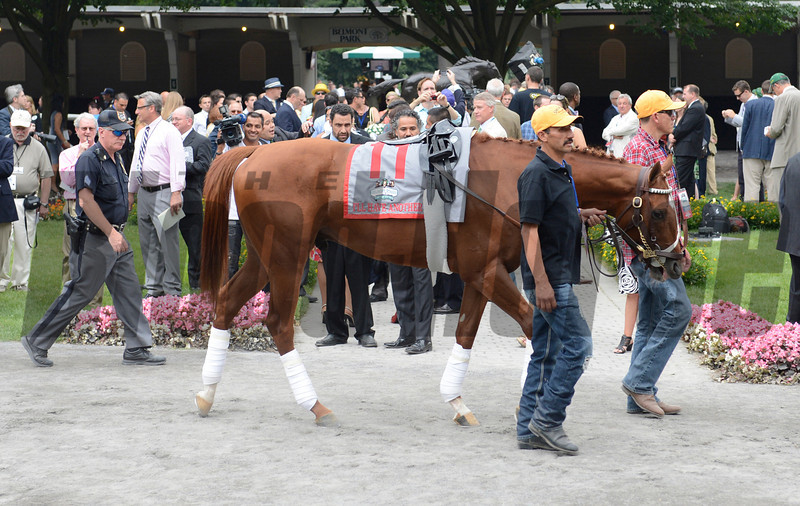 I'll Have Another walks around the paddock before The Belmont Stakes at Belmont Park in Elmont, N.Y. June 9, 2012.<br /> Photo by Skip Dickstein