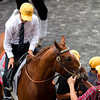I'll Have Another Retirement before the Belmont Stakes with Mario Gutierrez up.  Belmont Park, 6/9/12.<br /> Photo by Steve Heuertz