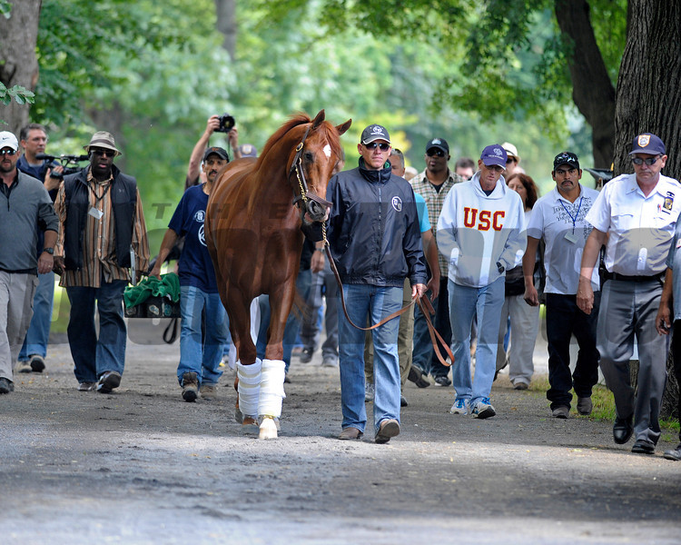 Caption:  Surrounded by security and media,  I'll Have Another moves into Barn 2, the barn for Belmont Stakes contenders.<br /> Belmont Park, June 6, 2012, Elmont, N.Y.<br /> Training hours activity on the track and at the barn.<br /> Photo by Anne M. Eberhardt