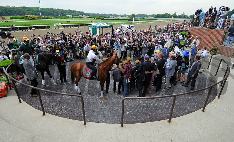Kentucky Derby/Preaknes winner I'll Have Another is officially retired from racing, in a ceramony in the Belmont winners' circle...<br /> © 2012 Rick Samuels/The Blood-Horse