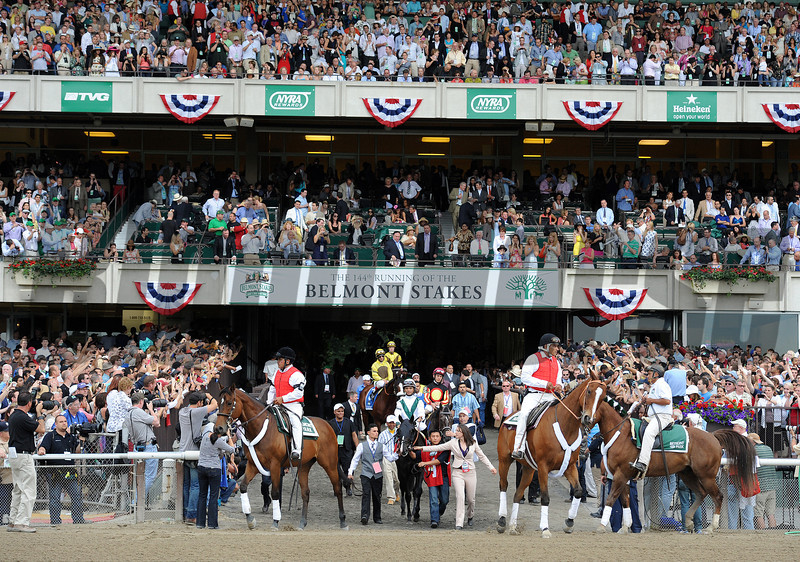 Horses for the Belmont Stakes, enter the track...<br /> © 2012 Rick Samuels/The Blood-Horse