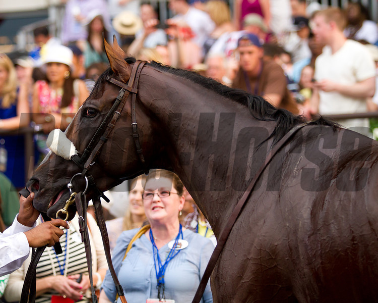 Union Rags in the winner's circle.  Belmont Stakes, Belmont Park, 6/9/12.<br /> Photo by Steve Heuertz