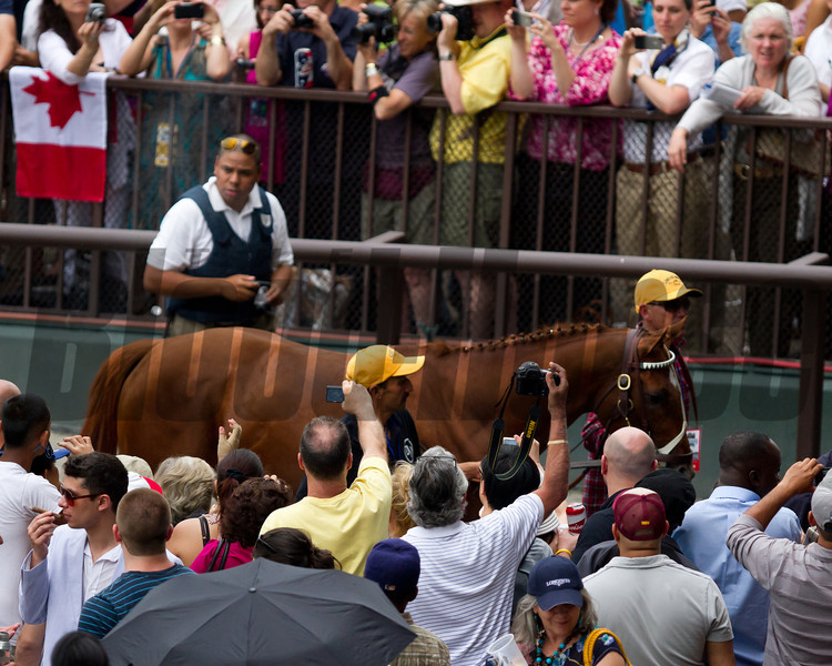 Fans say goodbye as I'll Have Another is retired.  Belmont Stakes, Belmont Park, 6/9/12.<br /> Photo by Steve Heuertz
