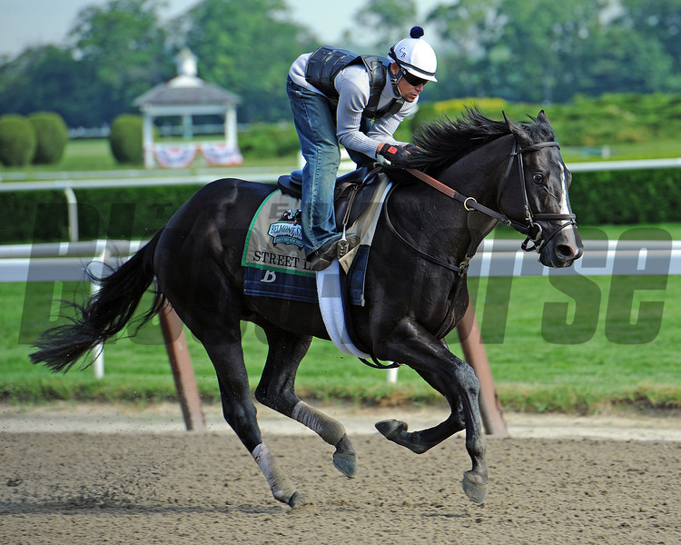 Street Life gallops Wednesday morning at Belmont...<br /> © 2012 Rick Samuels/The Blood-Horse