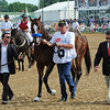 Bodemeister<br /> © 2012 Rick Samuels/The Blood-Horse