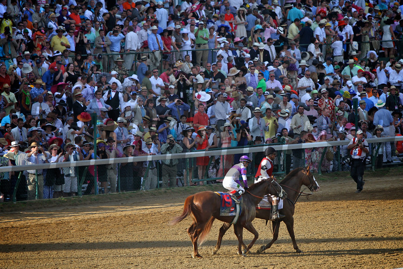 I'll Have Another passes the crowd on way to winner's circle<br /> Kentucky Derby 138<br /> Photo by Crawford Ifland.