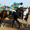 Bodemeister in the post parade, Kentucky Derby 138<br /> Photo by Dave Harmon.