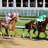 I'll Have Another and Bodemeister in the final stretch<br /> Photo by Dave Harmon.