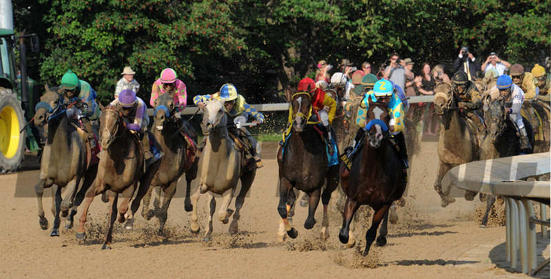 Kentucky Derby winner I'll Have Another looms in the middle of the field as Bodemeister leads the pack around the final turn. Courtney V. Be<br /> Photo by Courtney V. Bearse.