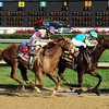 I'll Have Another and Bodemeister<br /> Photo by Dave Harmon.