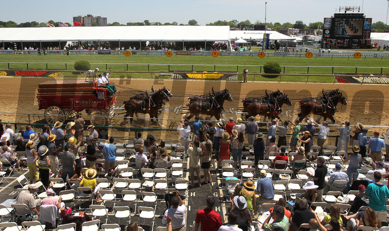 The Budweiser Clyds on Preakness Day at Pimlico Race Course in Baltimore, MD May 19, 2012.  Photo by Tom Boland