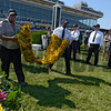 "The blanket of black-eyed susans is carried to the winner's circle at Pimlico Race Course in preparation for the Preakness Stakes that will run for the 138th time at ""Old Hilltop"" May 19, 2012.  PHOTO BY RICK SAMUELS"