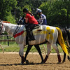 Scenes,   Pimlico Race Track, Baltimore, MD 5/19/12, Photo by Mathea Kelley ,
