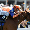 Zagora, javier Castellano up wins the Gallorette Handicapm ,  Pimlico Race Track, Baltimore, MD 5/19/12, Photo by Mathea Kelley