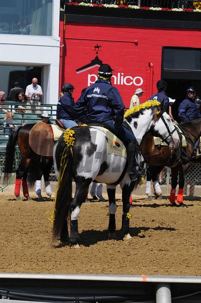Scenes,   Pimlico Race Track, Baltimore, MD 5/19/12, Photo by Mathea Kelley ,