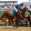 "Jennifer Rowland Smith, wins the ""Lady Legends For The Cure 3"" aboard Class Rules at Pimlico...<br /> © 2012 Rick Samuels/The Blood-Horse"