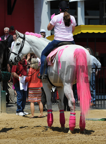 Pink Day Pimlico Race Track, Baltimore, MD 5/18/12, Photo by Mathea Kelley