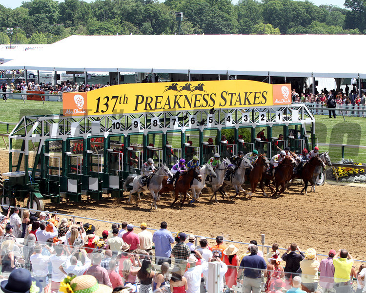 Horses leave the gate in good order at Pimlico Racecourse on May 19, 2012.