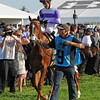 I'll Have Another makes his way to the track from the paddock at Pimlico...<br /> © 2012 Rick Samuels/The Blood-Horse