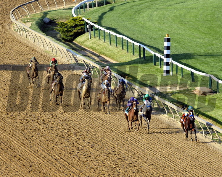 The field for the 137th Running of the Preakness in the stretch at Pimlico Racecourse on May 19, 2012.<br /> Photo by Chad Harmon.