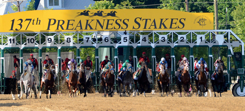 Horses leave the gate at the start of  the 137th running of The Preakness Stakes at Pimlico in Baltimore, MD. May 19, 2012.     <br /> Skip Dickstein Photo