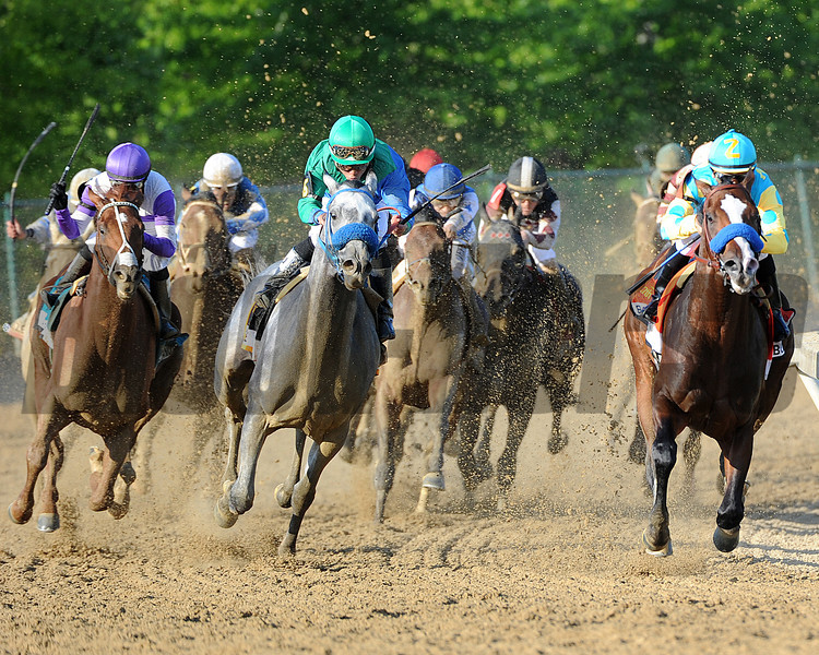 I'll Have Another, Mario Gutierrez up, wins the Preakness Stakes ,  Pimlico Race Track, Baltimore, MD 5/19/12, Photo by Mathea Kelley , Final Turn