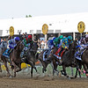 Bodemeister (blue shadowroll) leads the field the first time by the stands in the Preakness...<br /> © 2012 Rick Samuels/The Blood-Horse