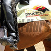 A Preakness Saddle Cloth at Pimlico Racecourse on May 19, 2012.<br /> Photo by Chad Harmon.