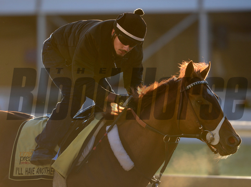 I'll Have Another out for his exercise in preparation for the Preakness Stakes May 18, 2012.  <br /> Skip Dickstein Photo
