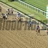 The field for the 137th Running of the Preakness passes the eighth pole in the stretch at Pimlico Racecourse on May 19, 2012.<br /> Photo by Chad Harmon.