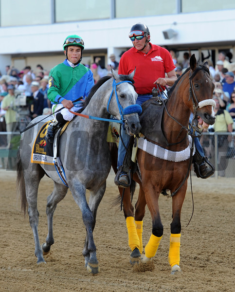 Preakness third place finisher Creative Cause...<br /> © 2012 Rick Samuels/The Blood-Horse