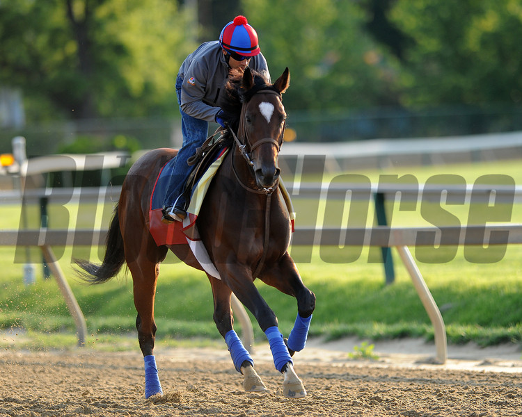 Went the Day Well, Pimlico Race Track, Baltimore, MD 5/17/12, Photo by Mathea Kelley