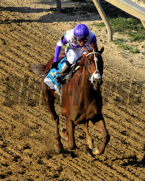 I'll Have Another w/Mario Gutierrez up win the 137th Running of the Preakness Stakes at Pimlico Racecourse on May 19, 2012.<br /> Photo by Chad Harmon