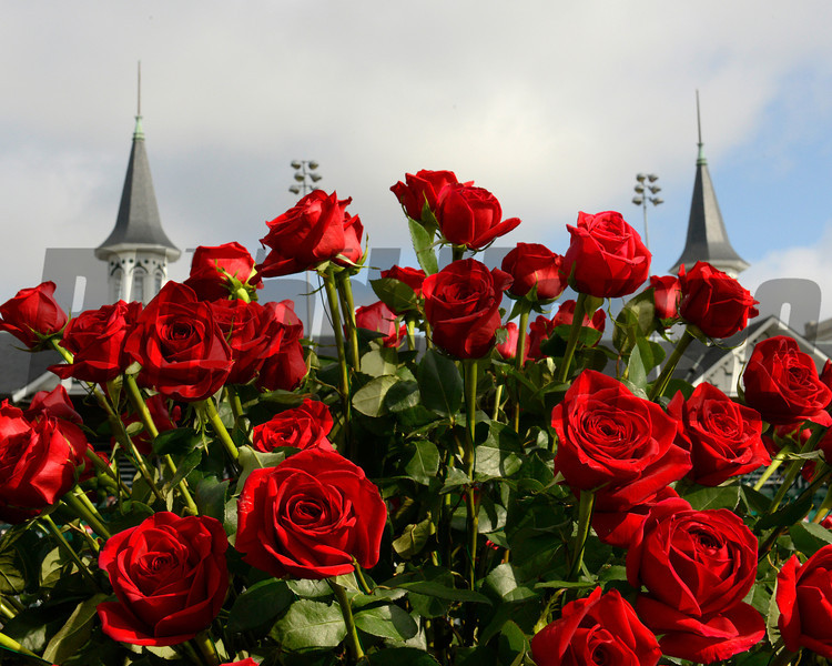 Caption:  spires and roses<br /> Kentucky Derby and Kentucky Oaks contenders on the track at Churchill Downs near Louisville, Ky. on May 5, 2012.<br /> Scenes1  image553<br /> PHoto by Anne M. Eberhardt