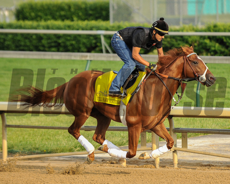 I'll Have Another gallops at Churchill Downs<br /> Photo by Mallory Haigh