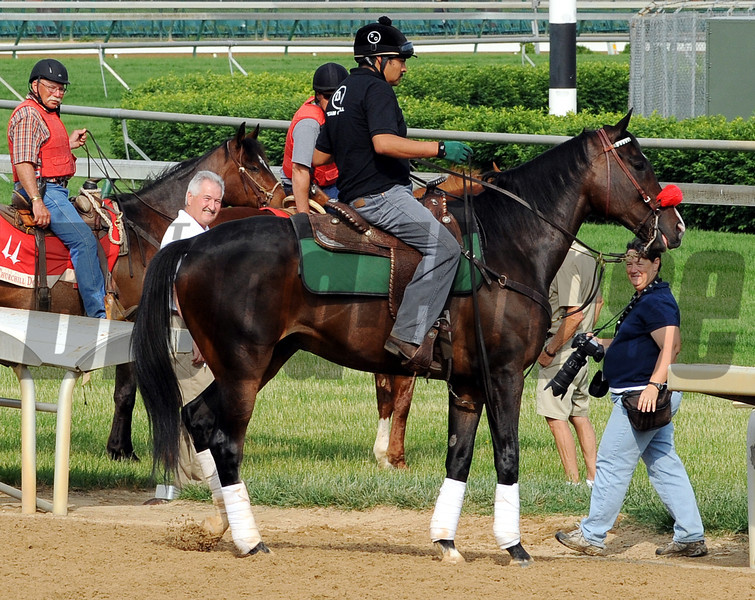 Lava Man - Churchill Downs, May 3, 2012.<br /> Photo by Dave Harmon
