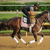 Broadway's Alibi at Churchill Downs.<br /> Photo by Mallory Haigh