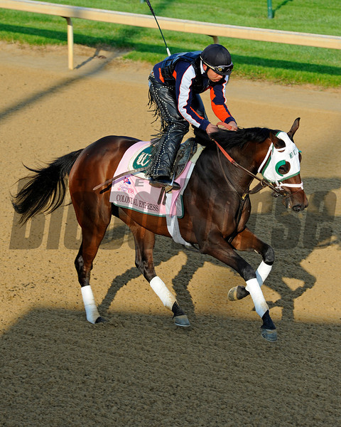 Caption:  Colonial Empress for trainer D. Wayne Lukas<br /> Kentucky Derby and Kentucky Oaks contenders on the track at Churchill Downs near Louisville, Ky. on April 22, 2012.<br /> AMWorks4_22_12 image929<br /> PHoto by Anne M. Eberhardt