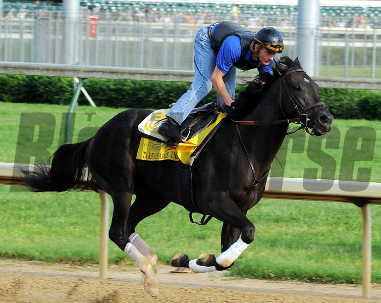 Take Charge Indy - Churchill Downs, May 3, 2012.<br /> Photo by Dave Harmon
