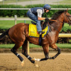 Union Rags at Churchill Downs.<br /> Photo by Mallory Haigh