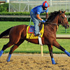 Went The Day Well<br /> © 2012 Rick Samuels/The Blood-Horse