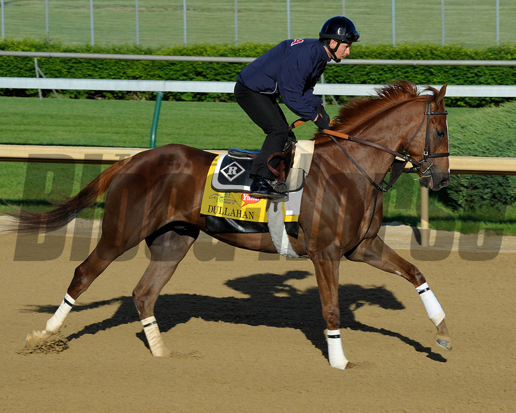 Caption:  Dullahan for trainer Dale Romans<br /> Kentucky Derby and Kentucky Oaks contenders on the track at Churchill Downs near Louisville, Ky. on April 27, 2012.<br /> AMWorks4_27_12 image576<br /> PHoto by Anne M. Eberhardt
