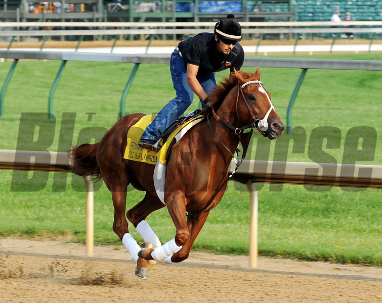 I'll Have Another - Churchill Downs, May 3, 2012.<br /> Photo by Dave Harmon