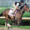 Oaks Lilly<br /> Churchill Downs; Louisville; KY ; Kentucky Derby 2012 4/30/11, , OAKS<br /> Photo by Mathea Kelley
