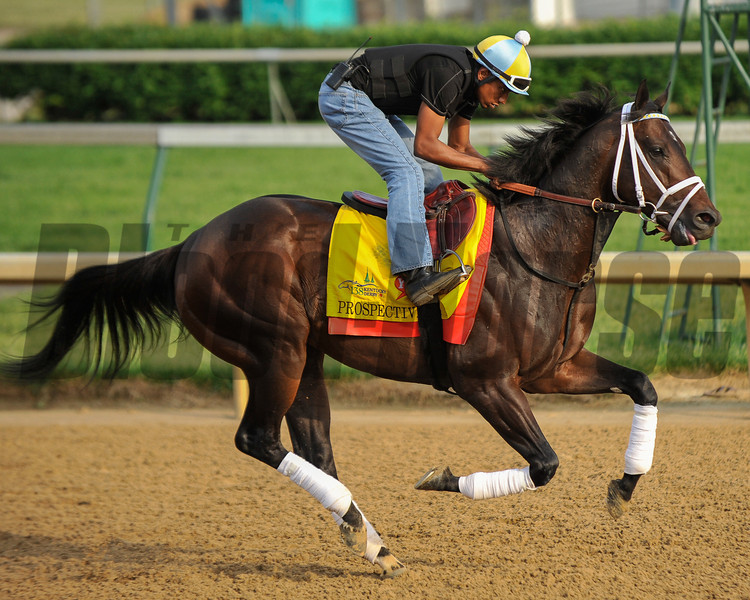 Prospective at Churchill Downs.<br /> Photo by Mallory Haigh