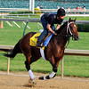 Alpha - Churchill Downs May 3, 2012.<br /> Photo by Dave Harmon