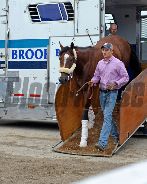 Caption:  Gemologist arrives at the Todd Pletcher barn<br /> Kentucky Derby and Kentucky Oaks contenders on the track at Churchill Downs near Louisville, Ky. on May 1, 2012.<br /> AMWorks2Arrivals5_1_12 image986<br /> PHoto by Anne M. Eberhardt